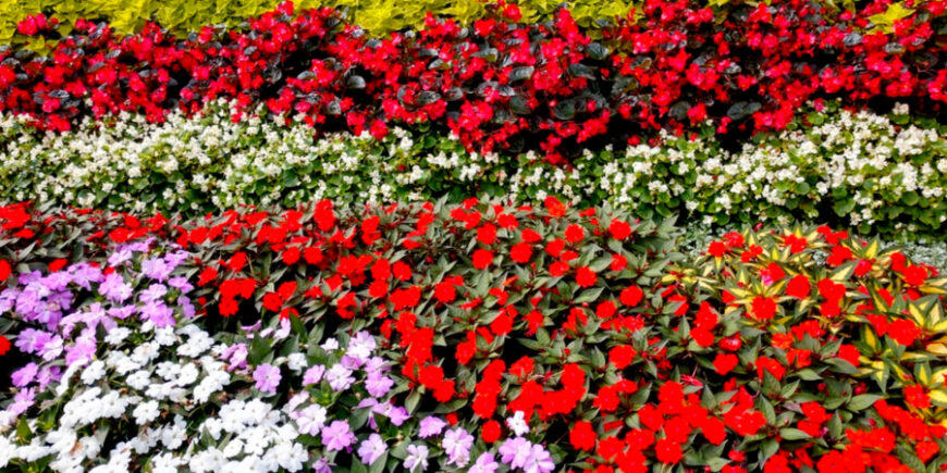 touring sunken gardens