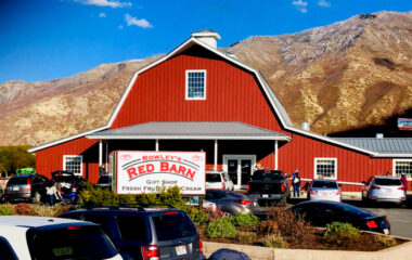 A Visit To Rowley's Red Barn During Fall Festival Season! Day 40