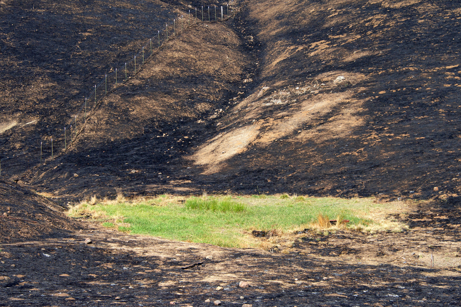 burned sonoma vallley