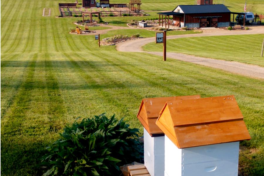 owg farm